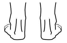 normipronaatio